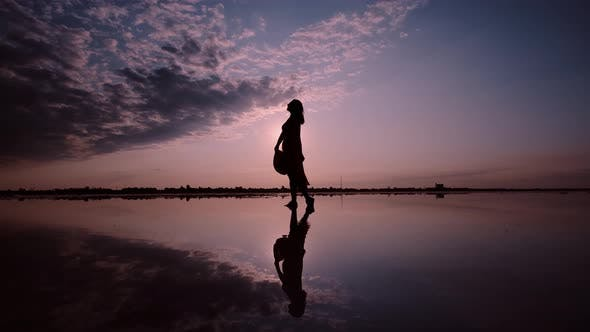Thumbnail for Silhouette of a Woman in a Waving Dress on a Sunset Background