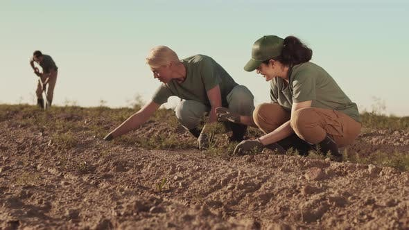 Thumbnail for Female Farmers Pulling out Weeds in Field