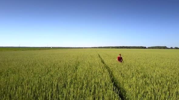 Beautiful Woman in Elegant Red Dress Crosses Yellow Field