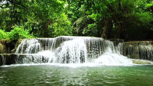 Thumbnail for Wild Rainforest Waterfall