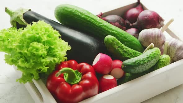 Thumbnail for Container with Vegetable Assortment