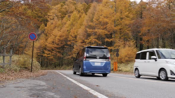 Thumbnail for Car On Road In Autumn