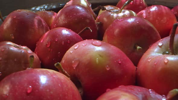 Red Juicy And Healthy Fruit Apple 5