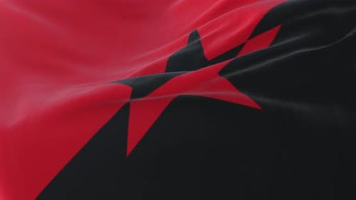 Platformism Flag