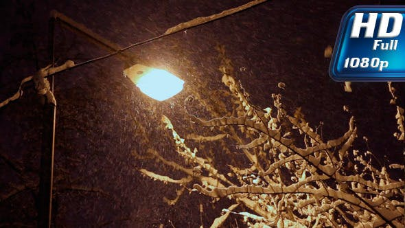 Thumbnail for Night Snowfall