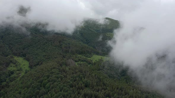 Thumbnail for Flying Through Mist And Fog Over Mountain Forest