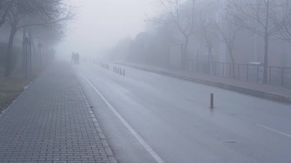 Cover Image for Road In Fog