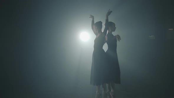 Thumbnail for Portrait of Two Ballet Dancers Shows Classic Ballet Pas. Graceful Professional Ballerinas Dancing