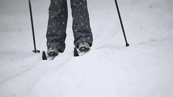 Thumbnail for Skier