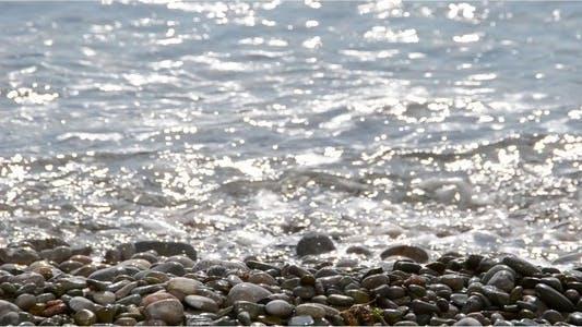 Thumbnail for Sea 17