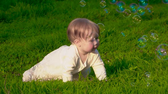 Cover Image for Little Baby on the Grass