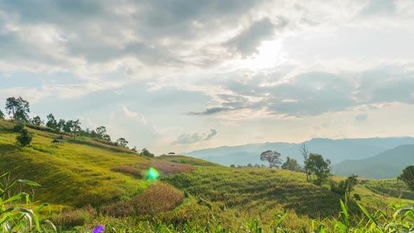 Thumbnail for Landscape Nature
