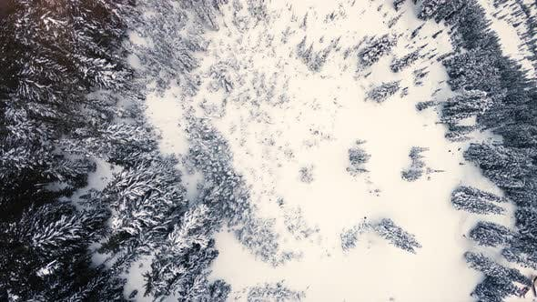 Cover Image for Winter Title And Logo Background Aerial Over Snow Covered Mountain Forest