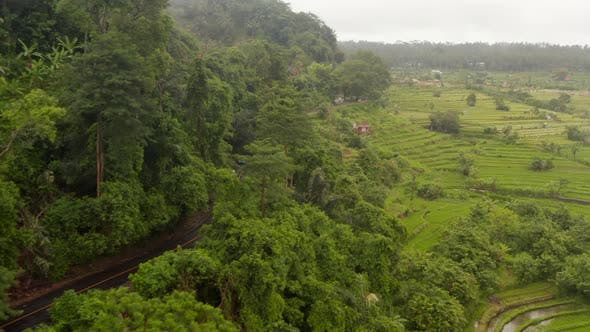Aerial View of Vehicles Driving Through Rural Countryside in Bali in the Rain