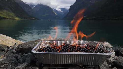 Disposable Barbecue Grid