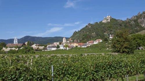 Durnstein Vineyards, Wachau Valley, Austria