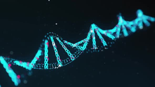 Thumbnail for Two-Stranded DNA Molecule
