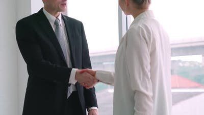 Business People Handshake in Corporate Office