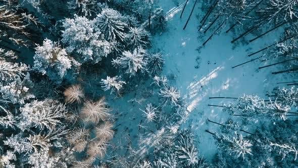aerial winter landscape