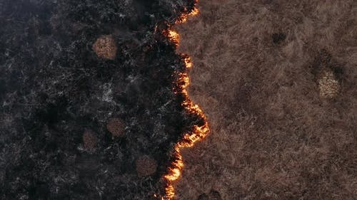 Natural Disaster, Burning Field. Epic Aerial Photography, Smoke Clouds and the Spread of Fire