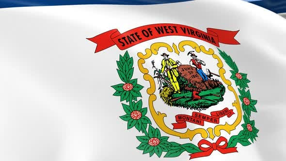 Thumbnail for West Virginia State Flag