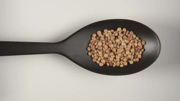 Thumbnail for Black Spoon Is Filling By A Dried Lentils