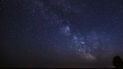 Milky Way Galaxy In Night Starry Sky Above Lonely Tree In Summer Meadow