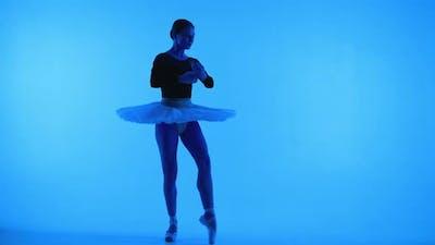 Professional Ballerina Dancing Ballet