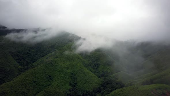 Thumbnail for Aerial View of Lush Green Rain Forest Mountain 11