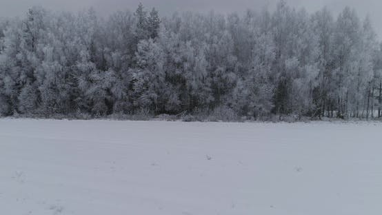 Thumbnail for Winter Landscape with Forest, Field. Winter Landscape