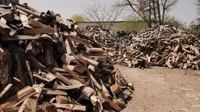 Stack of Chopped Firewood Raw Barked Wood Logs in a Storage