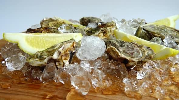 Austern auf Eis auf einem rotierenden Brett.