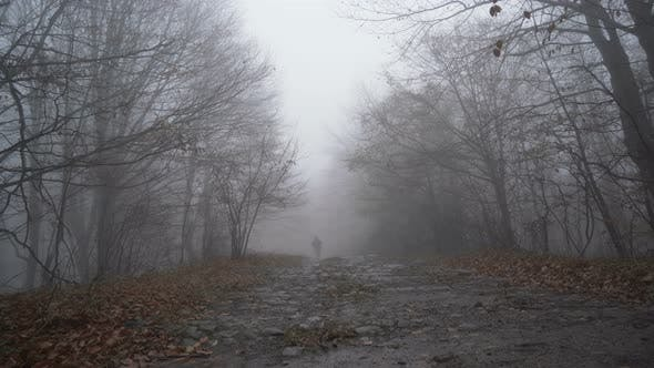 Thumbnail for Lonely Lost Man in Blue Tourist Jacket Walking on Wet Foggy Forest Road Using Walking Sticks