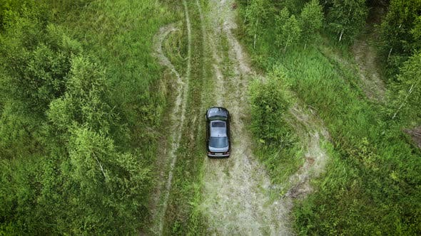 Aerial view on car driving through summer forest road. Scenic summer landscape