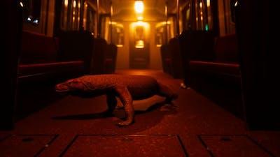 Comodo Dragon in Underground Metro Station