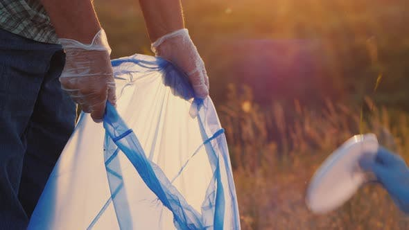 Cover Image for Volunteers Put Trash in Plastic Bags. Cleaning the Park and Caring for the Environment