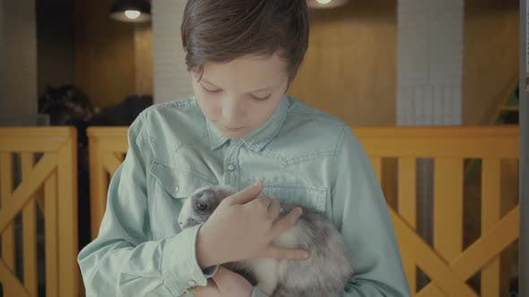 Thumbnail for Boy Holds a Rabbit in His Hands on a Farm