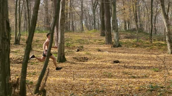 Thumbnail for Athlete Jogging In The Forest
