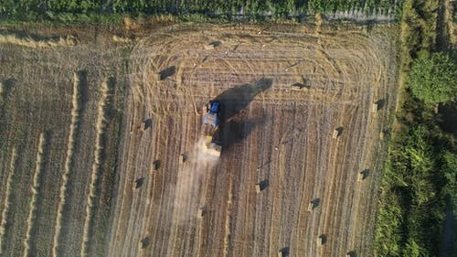 Harvest Time in Agriculture with Equipment