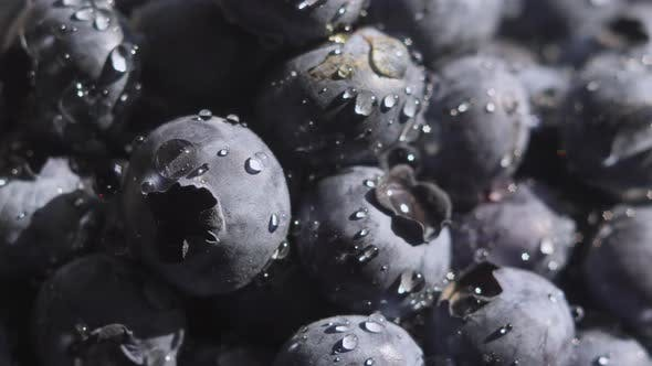 Thumbnail for Close Up Blueberry with Water Drops Rotating Background. Lot of Ripe Blueberries Close Up. Organic
