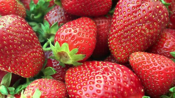 Thumbnail for Rotating Strawberries