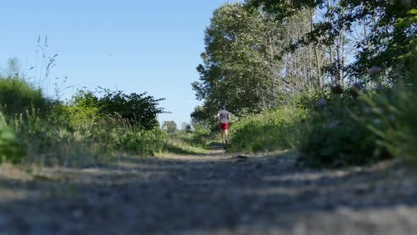Thumbnail for Jogging Man in Summer Forest