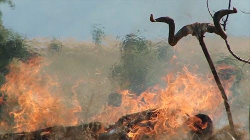 Uraltes brennendes Leichen Ritual