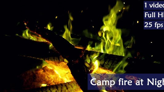 Thumbnail for Camp Fire At Night