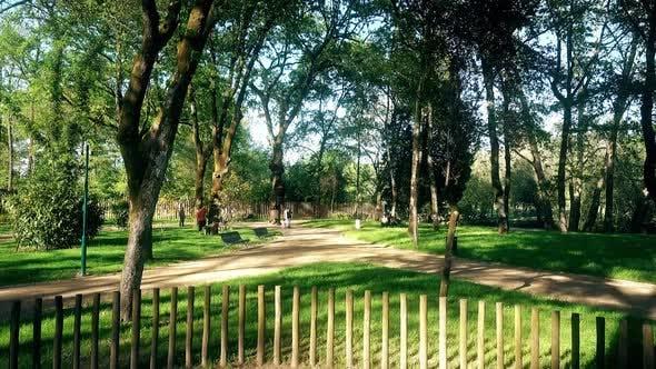 Thumbnail for Green Park