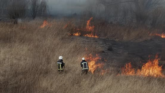 Firefighters Shovel Extinguishes Fire In The Field