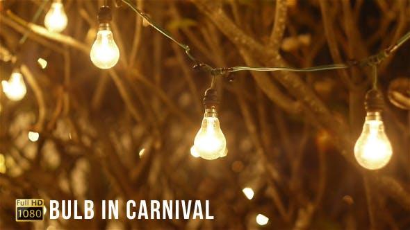Bulb In Carnival