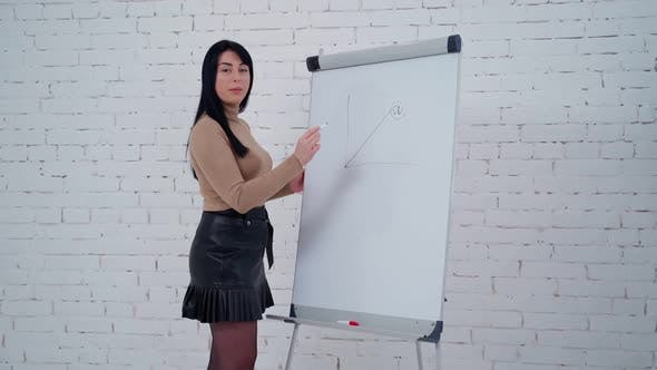 Attractive woman presents her ideas of the company