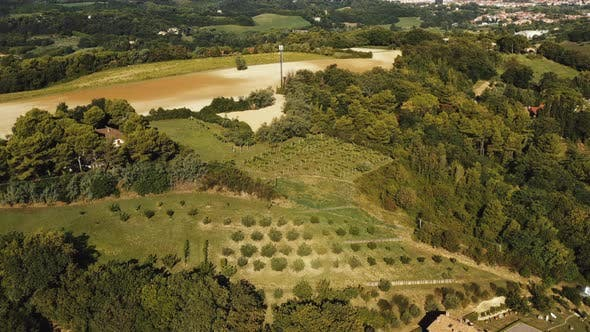 Beautiful Aerial Background of Hilly Summer Mediterranean Landscape with Trees, Hills and Fields