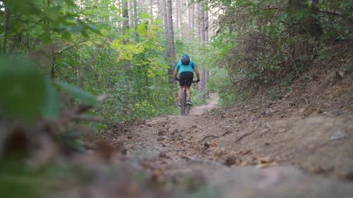 Young Mountain Biker Climbs on a Path in a Forest